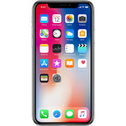 Apple iPhone X 256GB фото