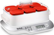 Tefal Multi Delices Express YG6601 фото